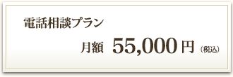 電話相談プラン 月額50,000円(税別)