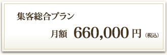 集客総合プラン 月額600,000円(税別)