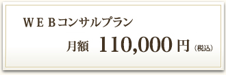 WEBコンサルプラン 月額100,000円(税別)