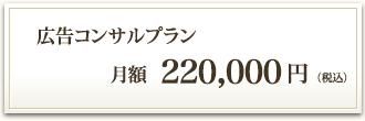 広告コンサルプラン 月額200,000円(税別)
