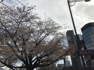 LIFULL HOME'S様主催不動産セミナー(2018.03.23) (11)